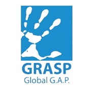 grasp1